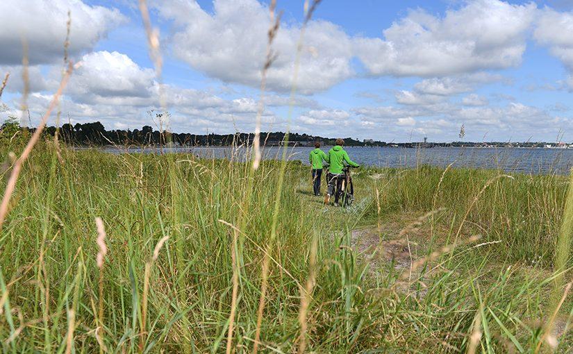 Frühjahr an der Ostsee